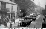 Knaresborough cattle market 1906